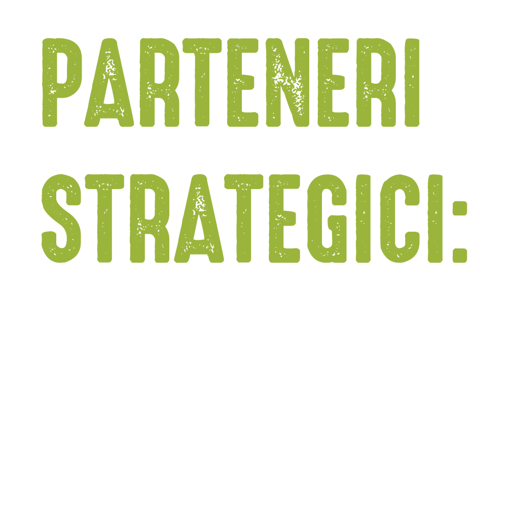 Partener-Strategic